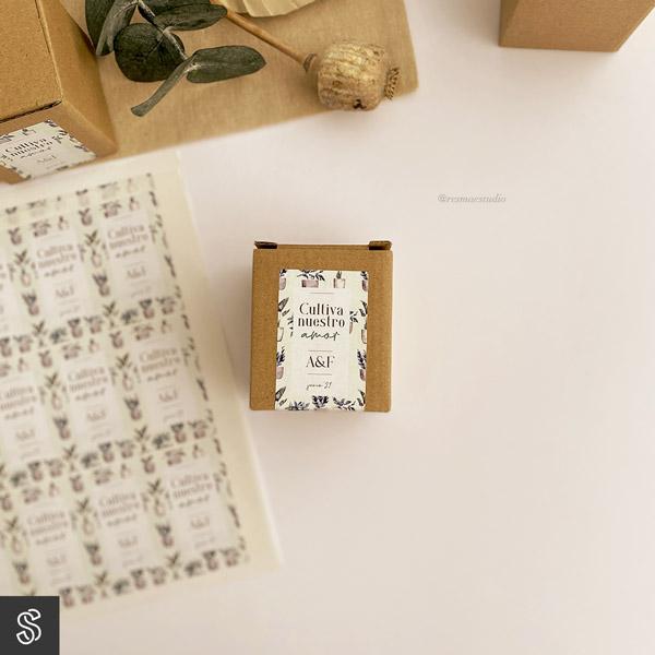 ideas para regalar en tu boda kit de plantación